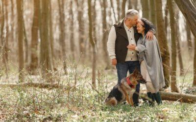 Därför bör pensionärer skaffa hund