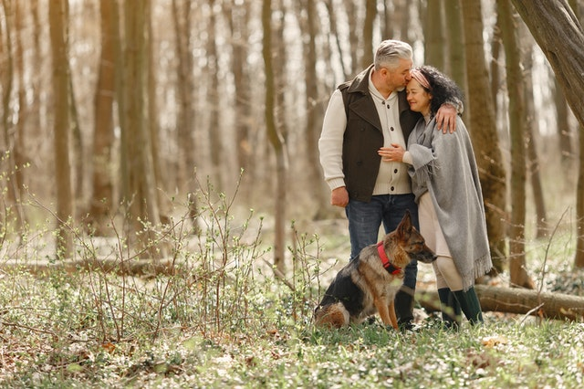 Skaffa hund som pensionär